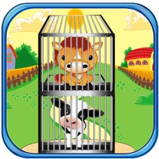 Activities of May Day - Animal Cage Tower Building