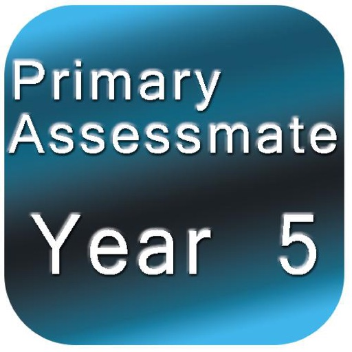 Year 5 Primary Assessmate