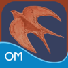 The Perfect Calm Deck - Oceanhouse Media