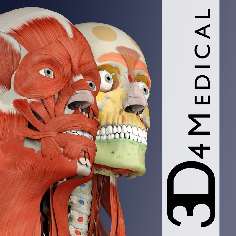3 Minutes to Hack Complete Anatomy 2019 - Unlimited