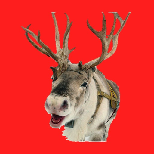 Reindeer Camera HD icon