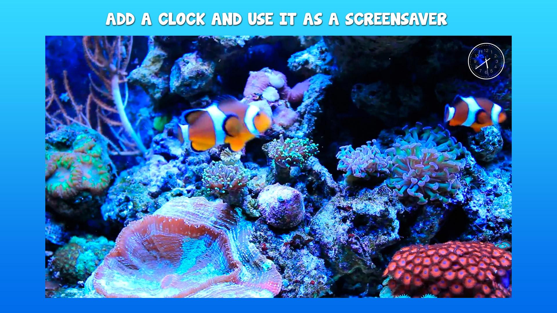 Aquarium 4K √ screenshot 7