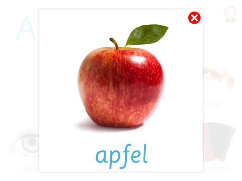 Alphabet und Wortschatz-Buch für Kinder (Wörterbuch für Kindergarten und Vorschule)-ipad-2