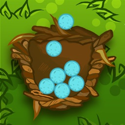 Blue Bird Balls - Save 100 Eggs!!!