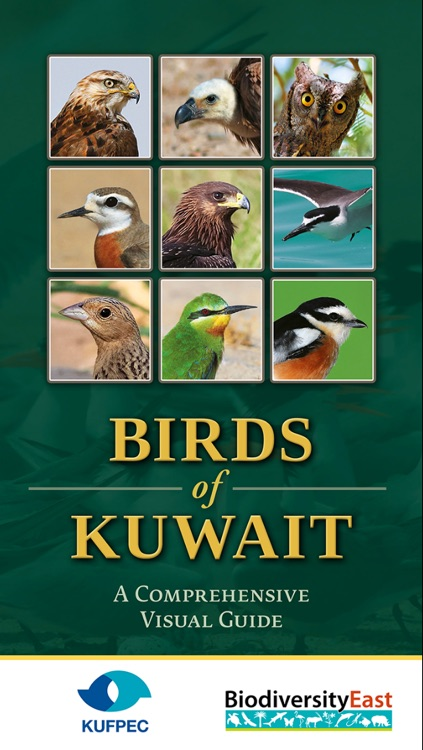 Birds Of Kuwait