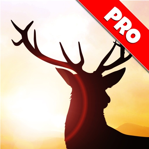 Deer Runner: Escape the Hunter Game - Pro Edition