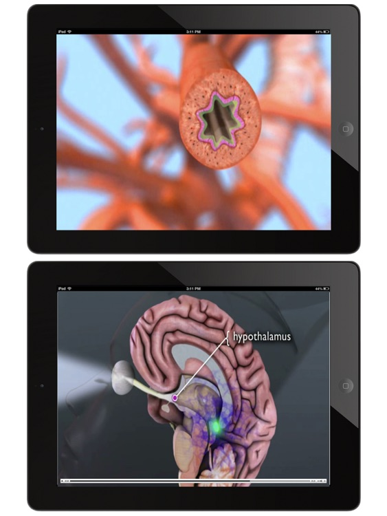 Animated Anatomy and Physiology for iPad