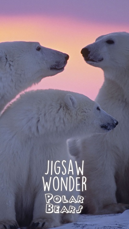 Jigsaw Wonder Polar Bears for Kids