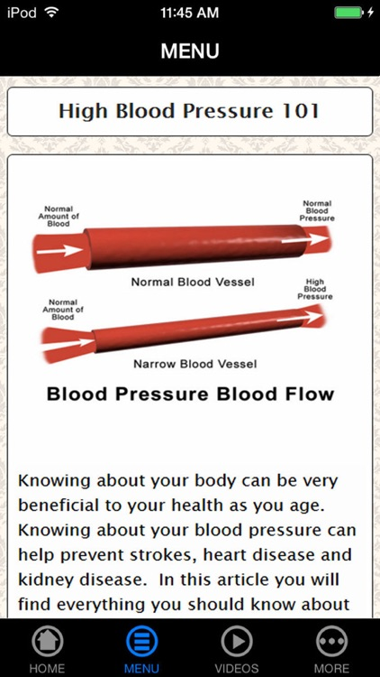 Best Way to Lower Your High Blood Pressure Fast and Early Prevention Guide & Tips for Beginners