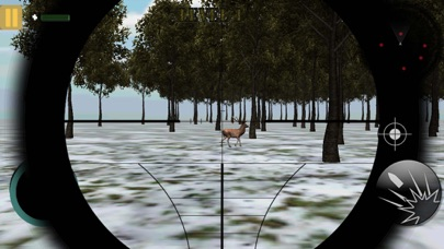 Stag Hunting In Jungle 1