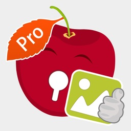 Photo Locker Advanced Pro
