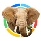 Animals 100 - Real Animals icon