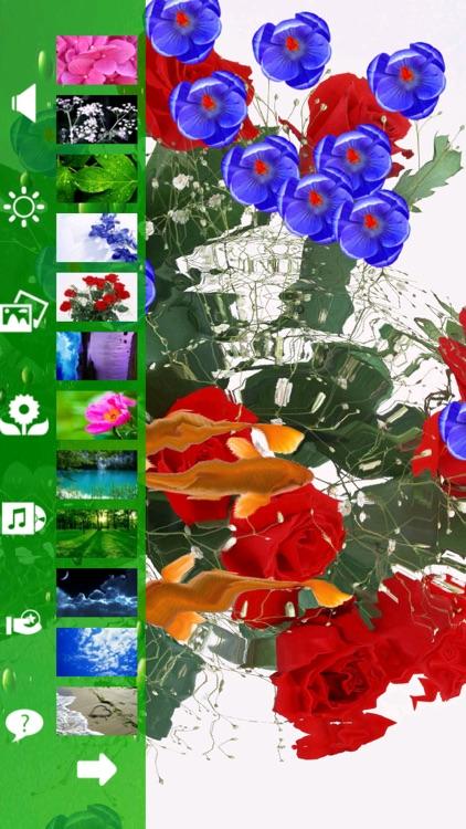 Koi & Flower screenshot-3