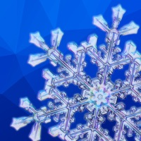Codes for Snow Crystals Hack