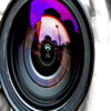 Photography Fundamentals - Jason Stafford