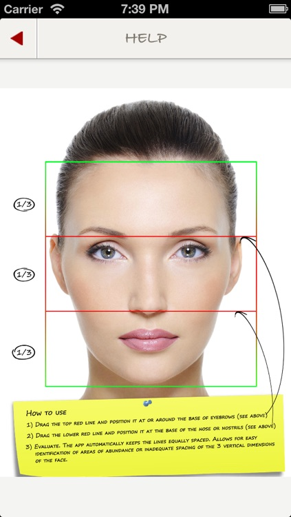 Facial Thirds