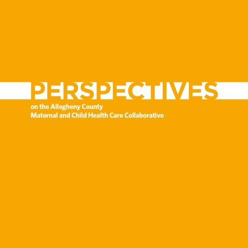 UPMC Healthplan Perspectives Report