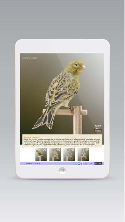 Ornitología Práctica screenshot-4