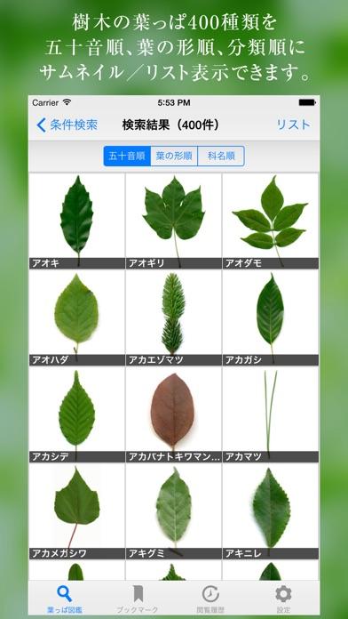 葉っぱ図鑑 - Leaf Dictiona... screenshot1