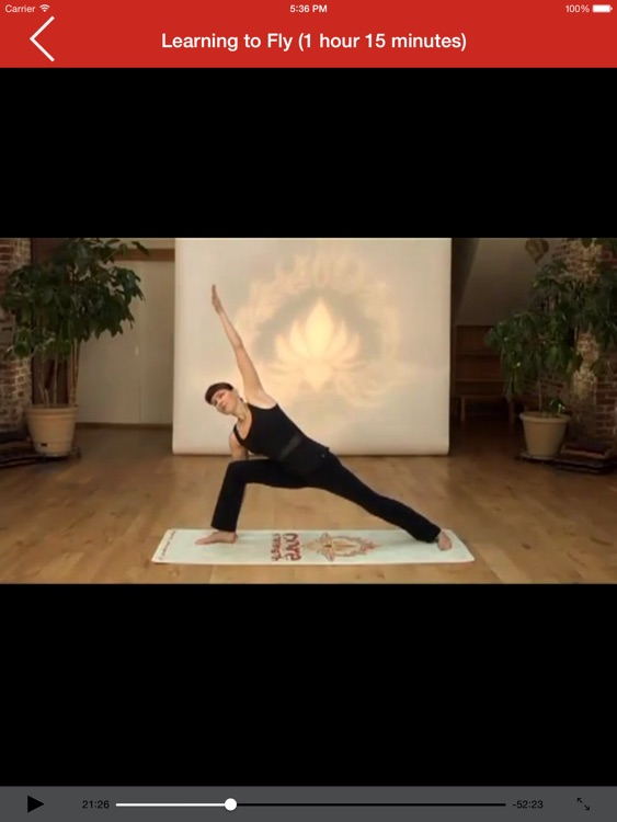 How to Detox with Yoga for iPad