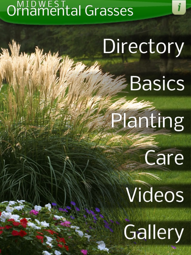 Midwest ornamental grasses on the app store workwithnaturefo