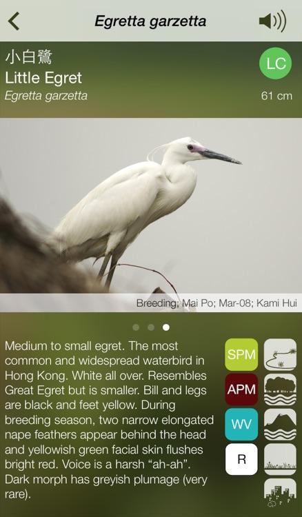 HKcBirds: Common Birds of Hong Kong screenshot-3