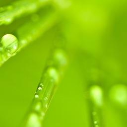 Se libérer des pensées négatives - La méditation de pleine conscience