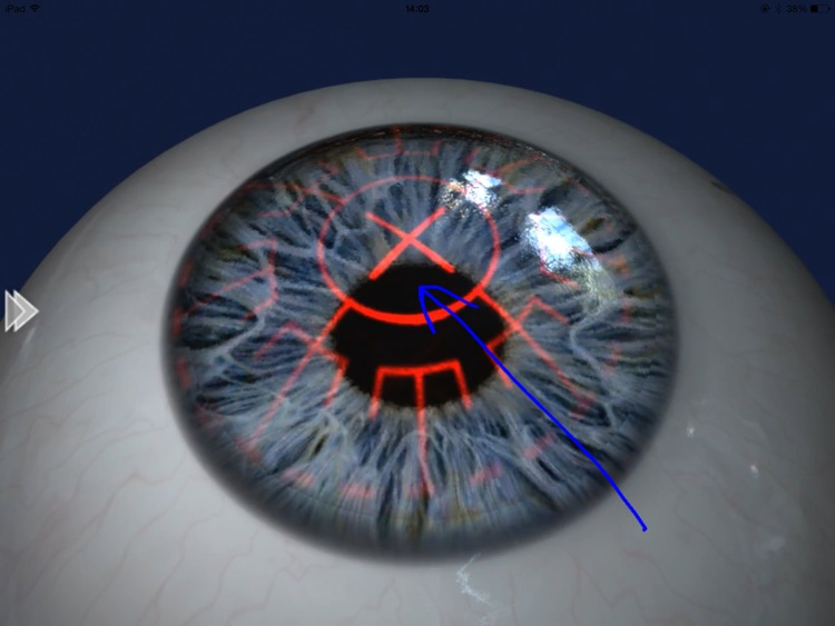 EyeDraw Lite screenshot-2