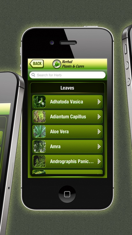 Herbal Plants & Cures