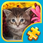Jigsaw Puzzles: Funny Cats icon