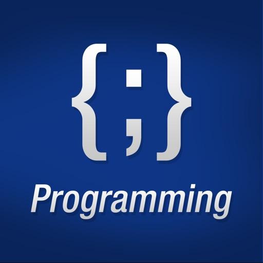 Programming Terminology Glossary
