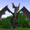 A Pet Dragon