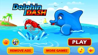 Dolphin Dash : Shark Hunter Edition
