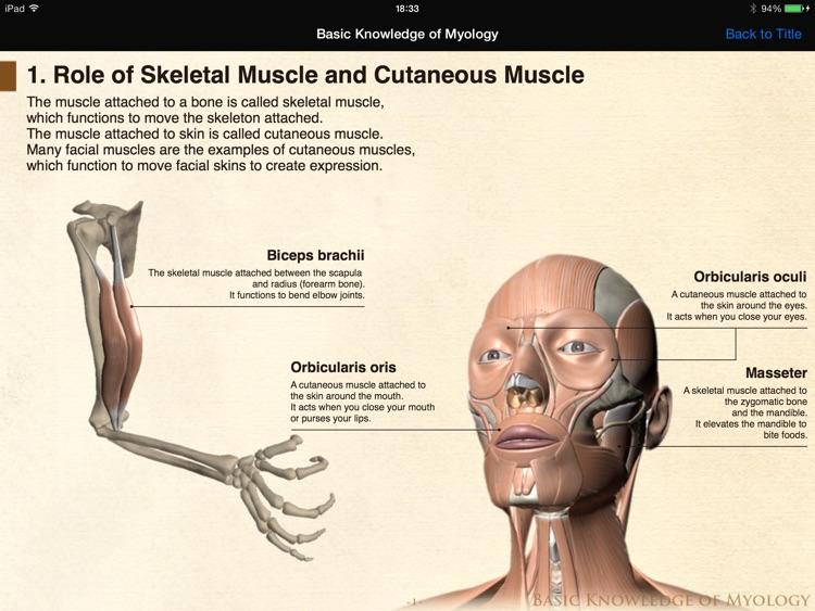 DS ANATOMY HEAD & NECK MUSCULOSKELETAL SYSTEM screenshot-3