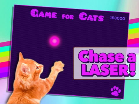 Game for Cats screenshot