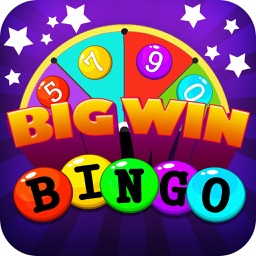 Bingo Big Win Pro