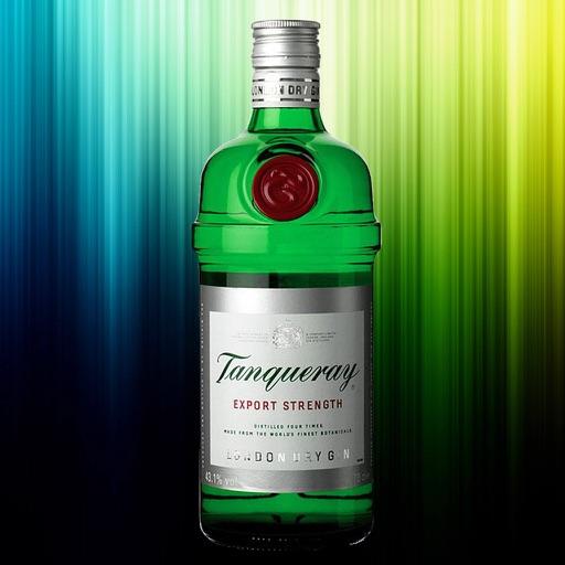 The Gin Encyclopedia