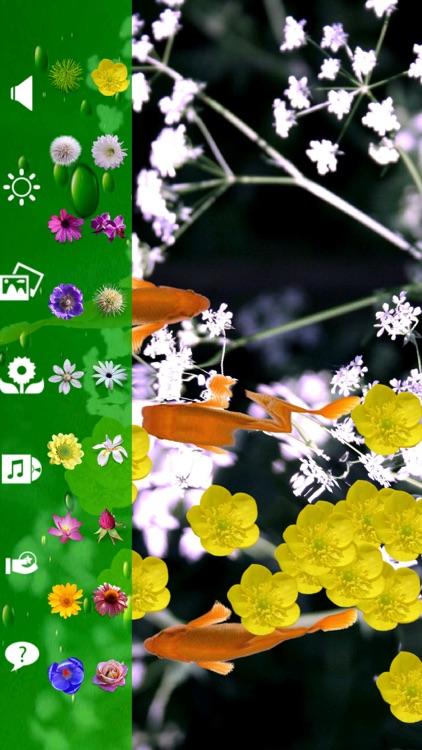 Koi & Flower screenshot-4