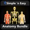 Anatomy Bundle by WAGmob - Quizmine.Com