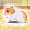 癒しのハムスター育成ゲーム - iPadアプリ
