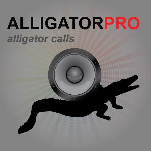 REAL Alligator Calls and Alligator Sounds for Hunting Alligators