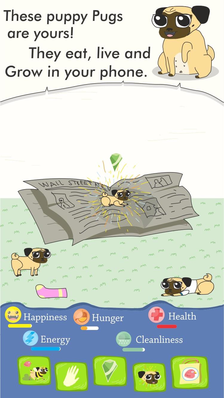 Growing Pug