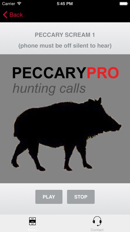 REAL Peccary Calls and Peccary Sounds for Hunting Call screenshot-3