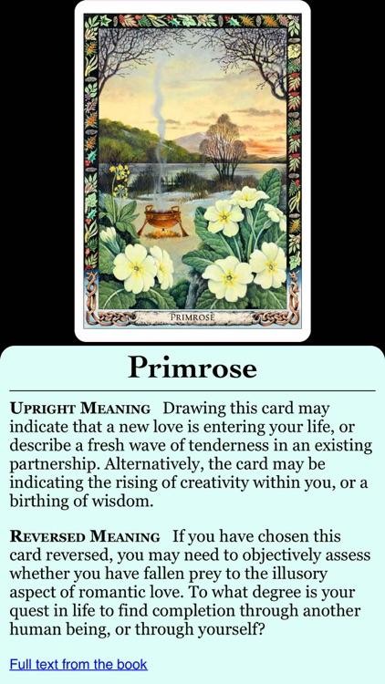 Druid Oracle Cards screenshot-3