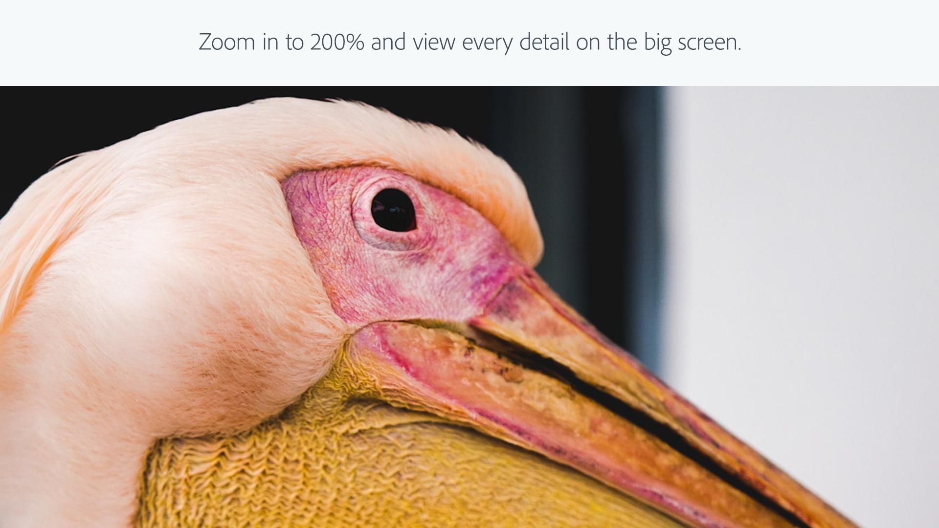 Adobe Photoshop Lightroom screenshot 5