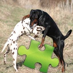 Dogs Studio Puzzle
