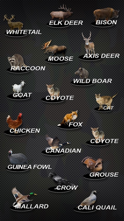 US Game and Pest Calls screenshot-2