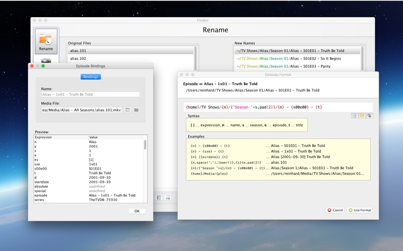 FileBot скриншот программы 3