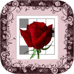 Picross Flower (nonogram)