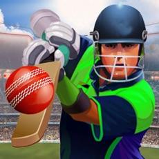 Activities of IPL Cricket Craze 3D